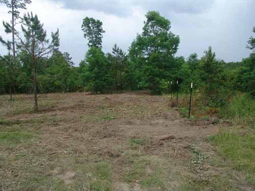 Fence Line Enhancement Great Views Brush Clearing