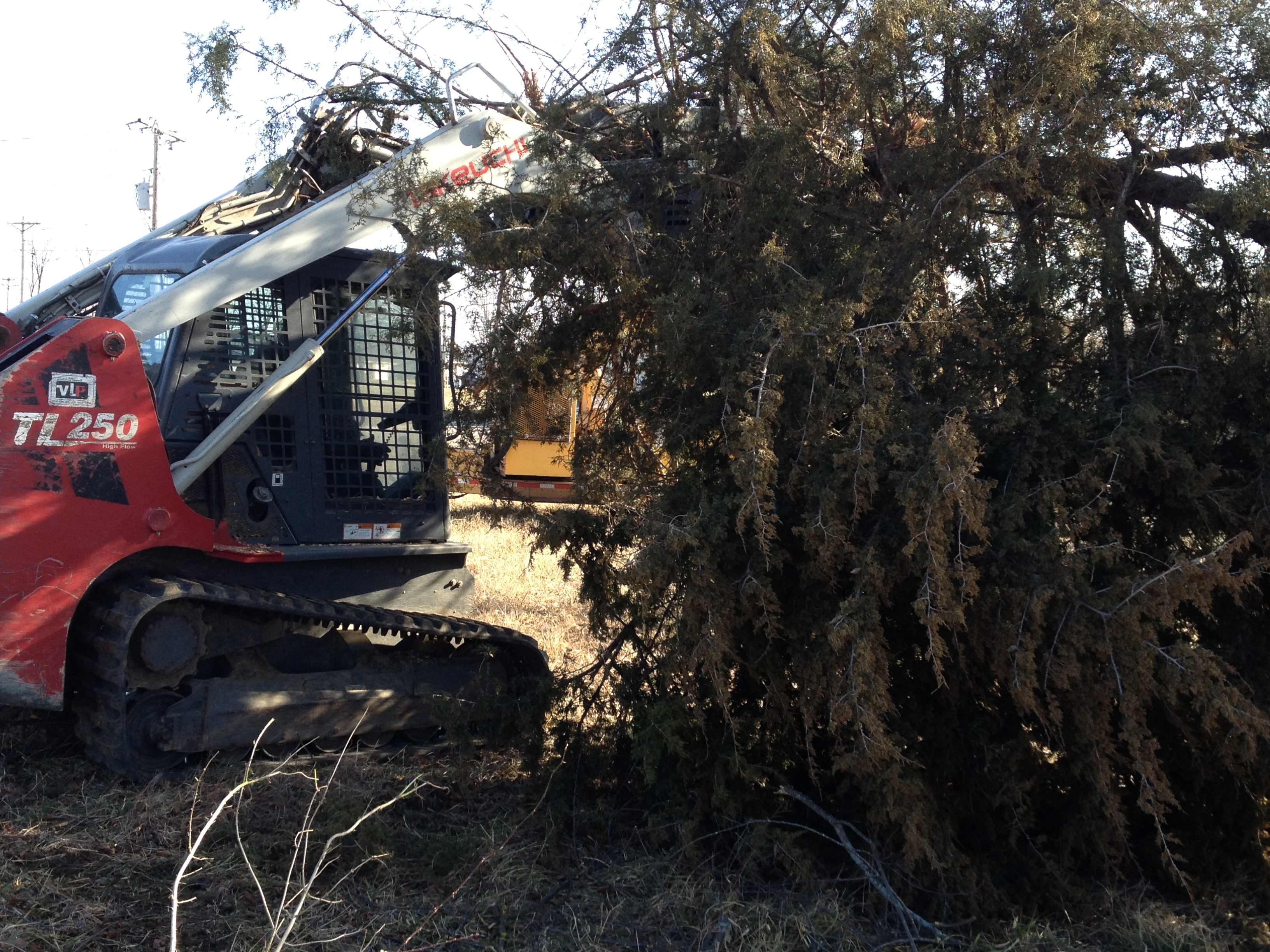 Land Clearing Equipment - How do we do it? - Great Views Brush Clearing